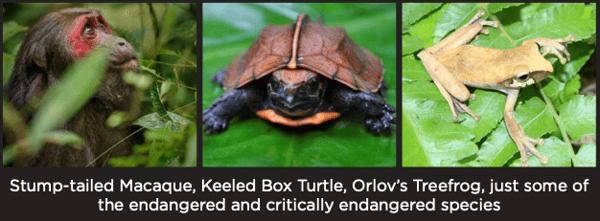 WLT Endangered Species